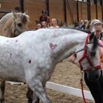 Pimp your pony