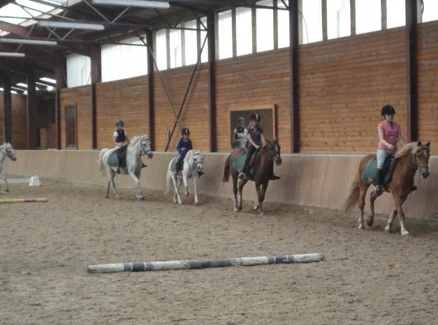 rijles pony