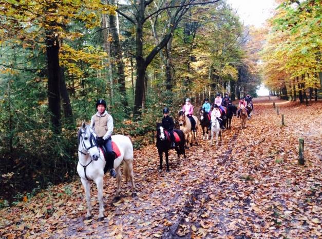 Buitenrit-te-paard-30-10-2015-1