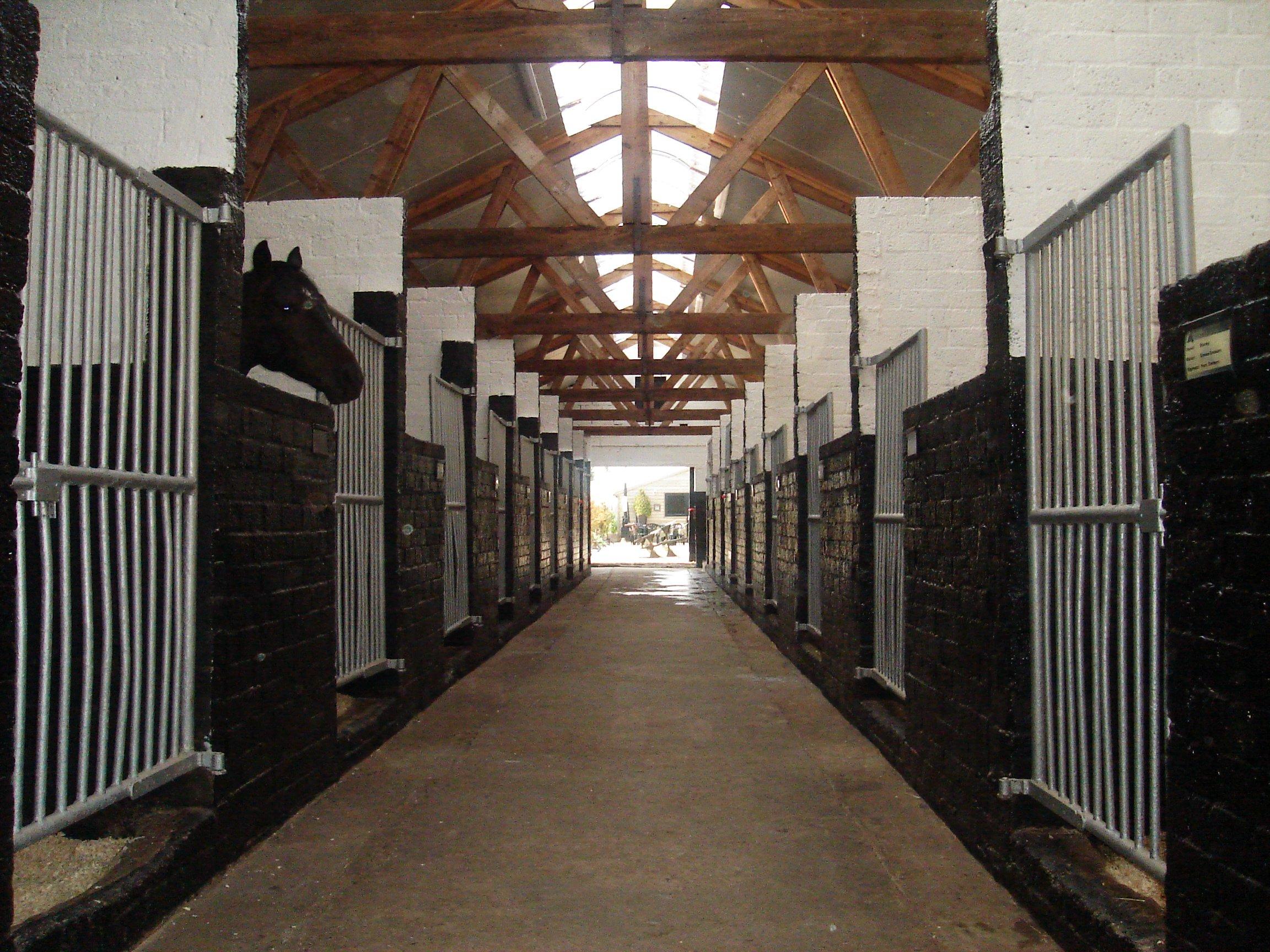 Manegestallen-ponys-uitzicht-op-binnenplaats-kampeerboerderij.